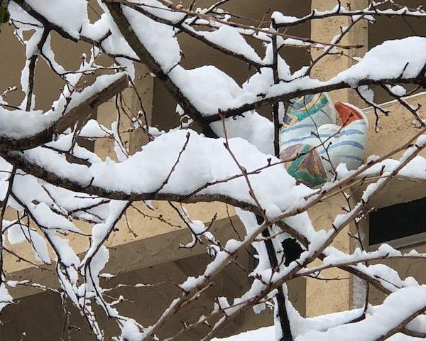 この冬、記録に残る豪雪。
